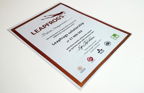 Leapfrogs-diplom